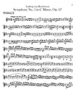 Esempio di parte staccata del violino I